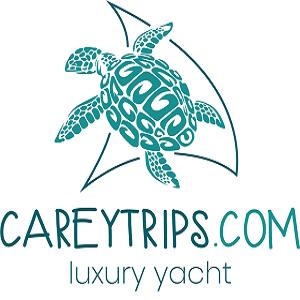 Careytrips logo 2